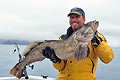 Lingcod