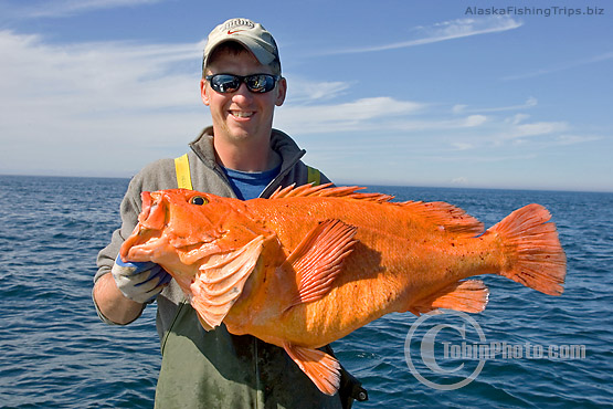 Yelloweye Rockfish