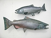 King Salmon Fiberglass Replicas: King Salmon Fish Replicas - Quality Fiberglass Fish Replicas by Taxidermist Mark Oslund