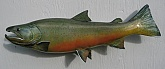 Bull Trout Fish Mount Reproduction: Bull Trout Fish Mount Reproduction