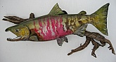 Chum Salmon Fish Mount Taxidermy