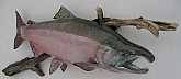 Silver Salmon Replica Mount: Silver Salmon Replica Mount-Quality Salmon Trophy by Mark Osund