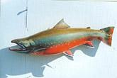 Dolly Varden Fish Replica: Dolly Varden Fiberglass Fish Replica